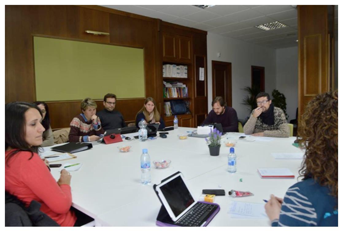 Reunión Ordinaria de la Junta Directiva de la Asociación Plataforma de Profesionales de Tratamiento Familiar de Andalucía,