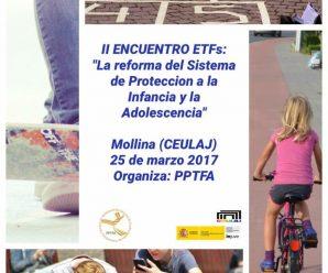 II ENCUENTRO DE EQUIPOS DE TRATAMIENTO FAMILIAR